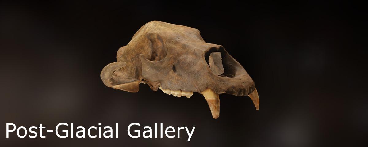 post-glacial-gallery-1